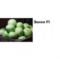 Семена капусты позд. Зенон ф1 (2500 шт.)