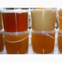 Мед алтайский (пробники бесплатно) более 10 видов