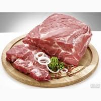 Мясо свинины оптом! От 100 кг. С доставкой по Москве, МО, РФ
