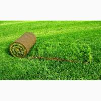 Продаём оптом и в розницу рулонные газоны