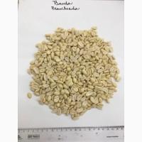 Предлагаем купить арахис от иностранного поставщика