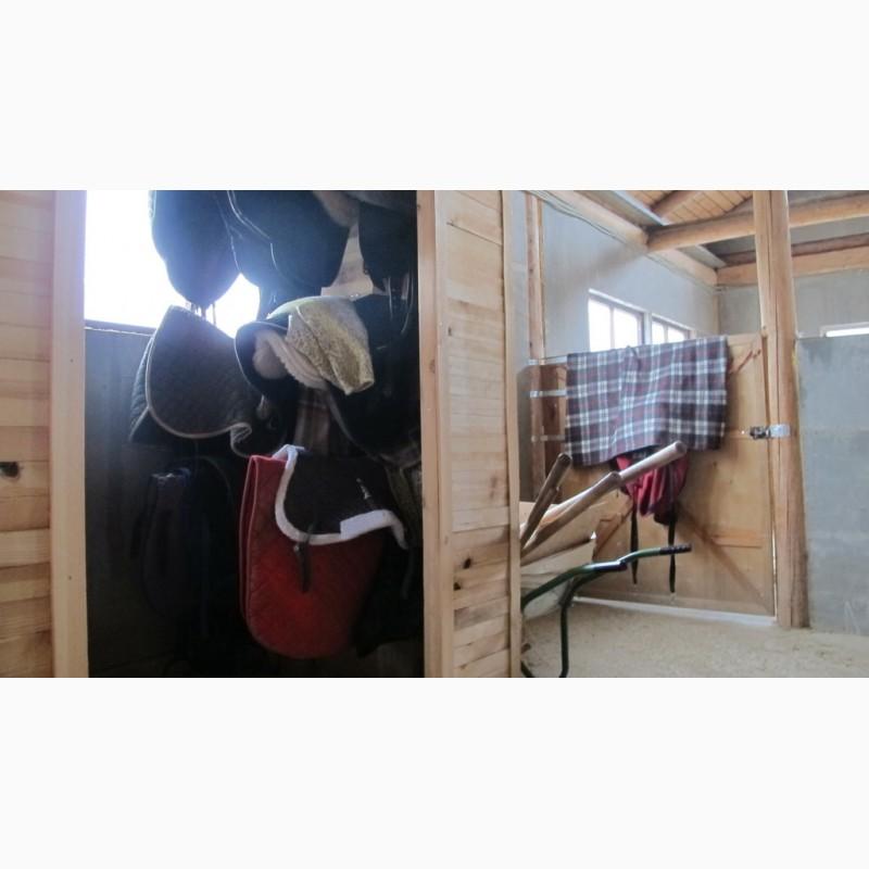 Фото 3. Конюшня ферма в аренду