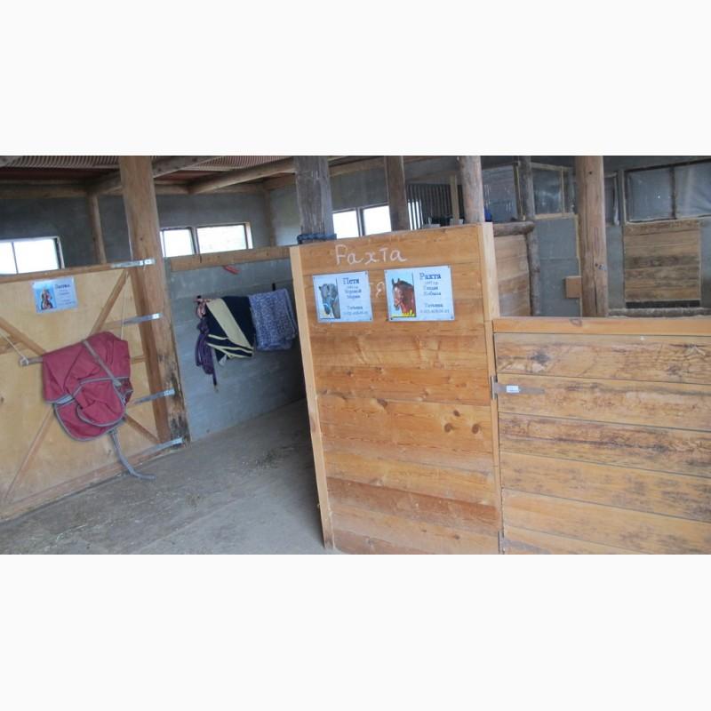 Фото 5. Конюшня ферма в аренду