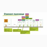 Микроудобрение КДМПР «Мальхам» марки Цинк