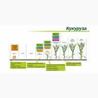 Ускоритель прорастания семян «Мальхам»