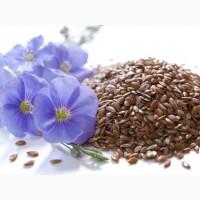 Продаем семена льна масличного