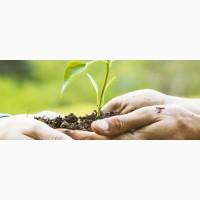 Fertim NS 28:18 комплексное азотно-серное удобрение