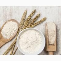 Глютен (Клейковина) Пшеничный
