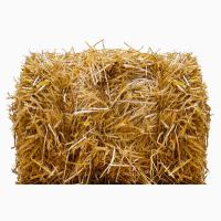 Солома пшеничная и овсяная