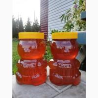 Продам мёд Алтайский с собственной пасеки. Урожай 2020