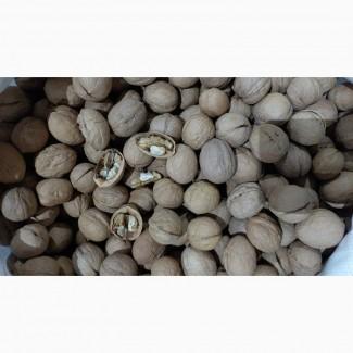 Продам Грецкий орех, Грецкий орех не очищенный, Ядро грецкого ореха