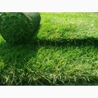 Рулонный газон Городской от 72 руб/рулон
