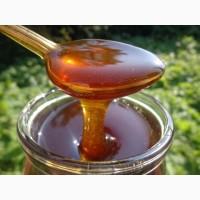 Мед разных видов фасованный/весовой