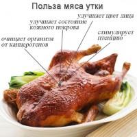 Мясо утки - утиная тушка