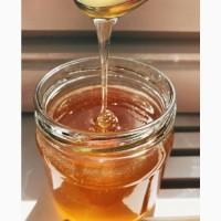Мед (разнотравье, гречишный, донниковый и др)