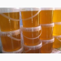 Мед алтайский (свежий урожай)