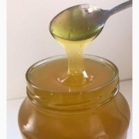 Мед свежий (разные виды)