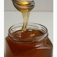Мед свежий (более 10 сортов)