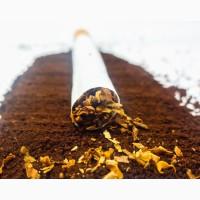 Табак ароматный