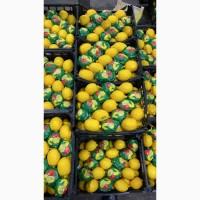 Лимоны оптом 1-2 сорта