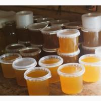 Мед оптом (разные сорта)