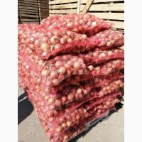 Реализуем прямые поставки репчатого лука от производителя из Волгоградской области