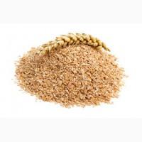 Продаем отруби пшеничные оптом и в розницу