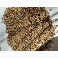 Продам кориандр зерно неочищенное