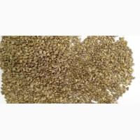 Продаем семена эспарцета оптом и в розницу