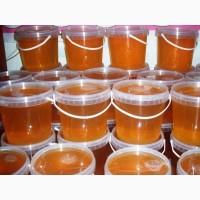 Мед оптом с алтайских пасек