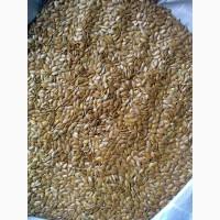 Предлагаем семена льна масличного для промышленной переработки