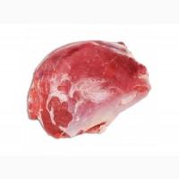 Кнакл говяжий по доступным ценам