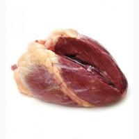 Сердце говяжье по доступным ценам