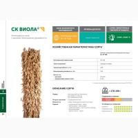 Семена сои: сорт ВИОЛА селекции Компании Соевый комплекс