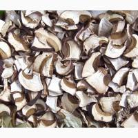 Продам Сухой белый гриб